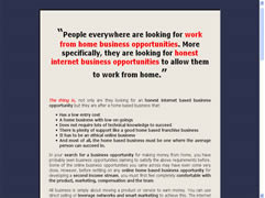 An online home based business landing page example
